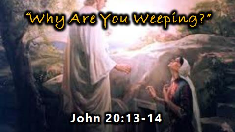 Why Are You Weeping? | John 20:13-14
